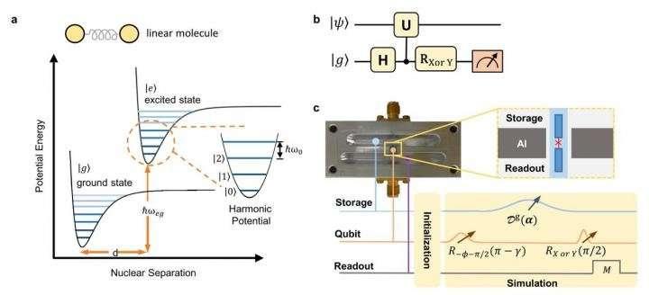 Simulating molecular spectroscopy with circuit quantum electrodynamics