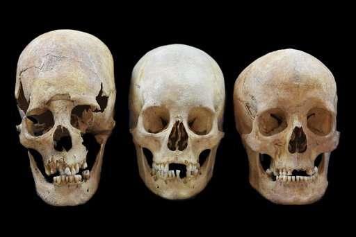 Skulls show women moved across medieval Europe, not just men