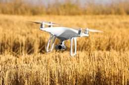 Smart drones and deep learning deliver low-cost precision agriculture for Aussie farmers