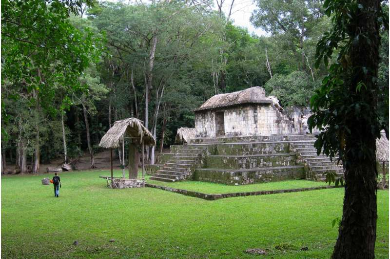 Smithsonian reports first evidence of live-traded dogs for Maya ceremonies