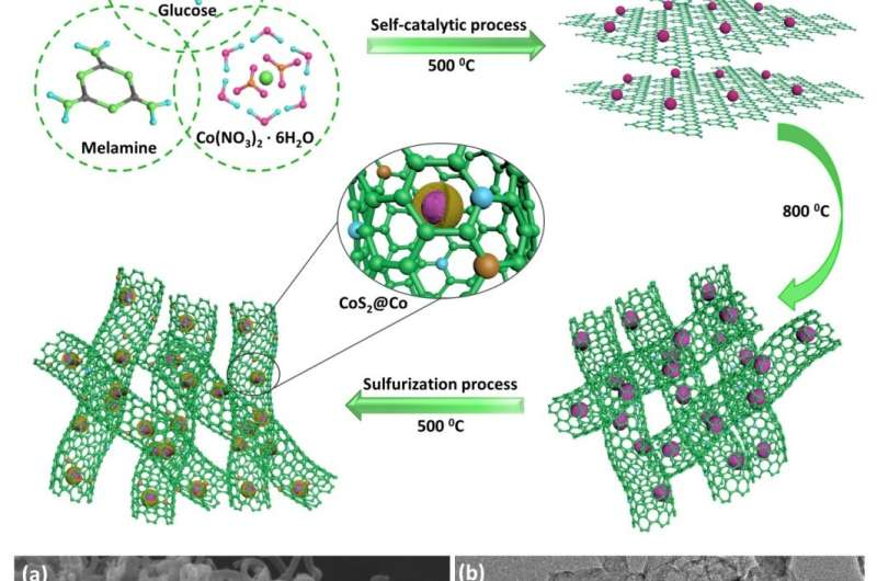 S, N co-doped carbon nanotube-encapsulated CoS2@Co