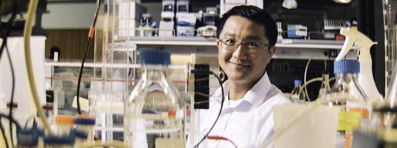 Soluble antibodies play immune suppressive role in tumor progression