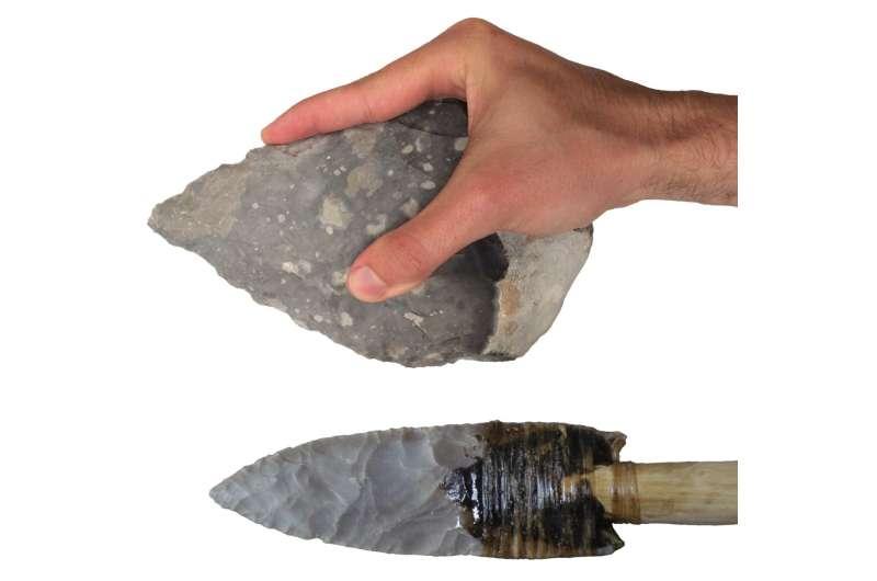 Stone tools reveal modern human-like gripping capabilities 500,000 years ago