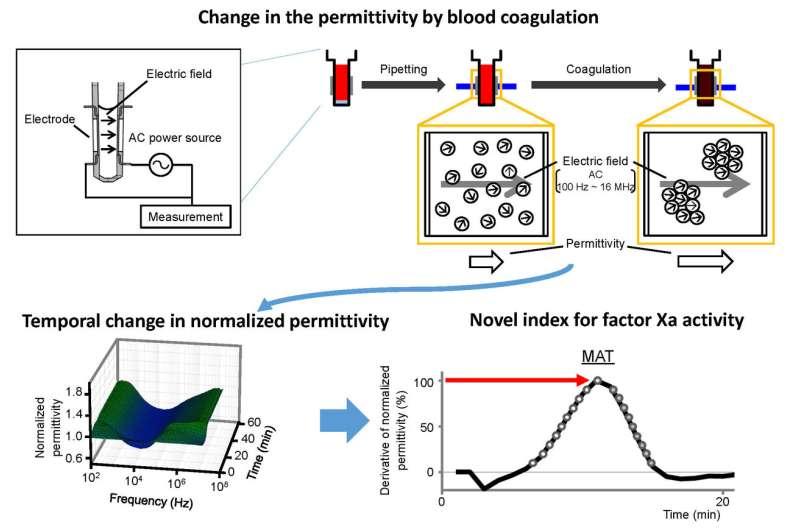 Stop that clot! Quantitative assessment of the blood coagulation cascade