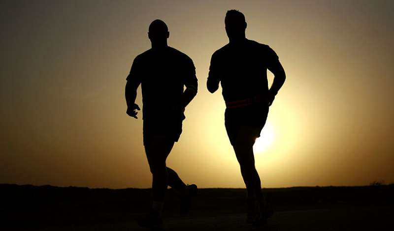 Study compares athlete and truck driver, identical twins