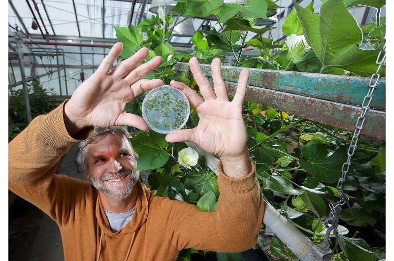 Study finds key to plant growth control mechanism