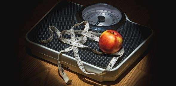 Study in mice suggests drug to turn fat 'brown' could help fight obesity