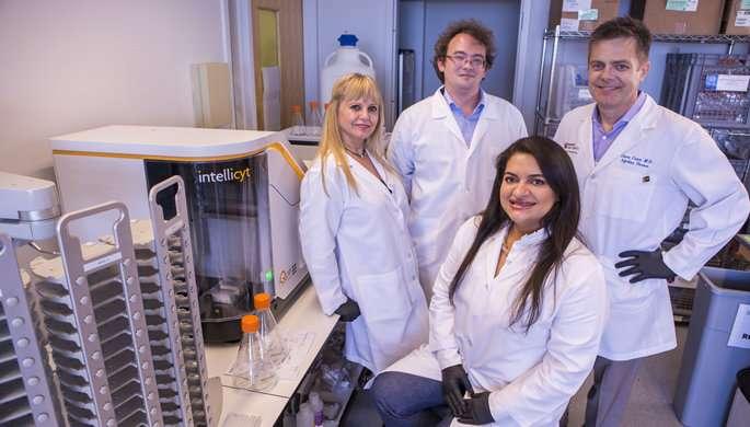 Team isolates antibodies that neutralize GIbug norovirus