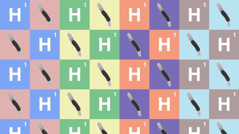Team shatters theoretical limit on bio-hydrogen production