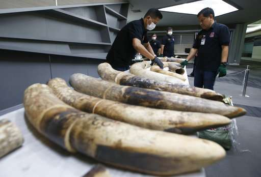 Thailand seizes large elephant tusks worth over $450,000