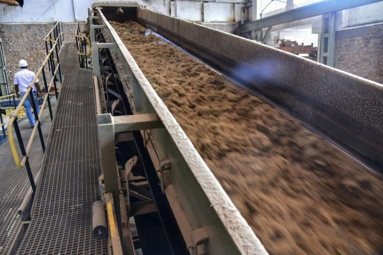 The cane stalks are crushed to extract juice for sugar. They are then soaked to extract the last juice. Finally, the stalks are