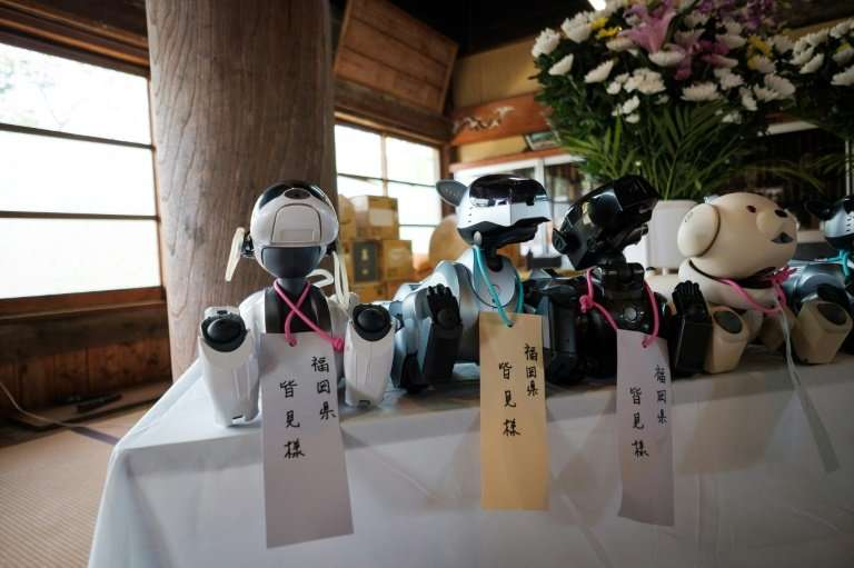 The defunct robodogs serve as the equivalent of organ donors for defective robots, but before they are put to use, the company h
