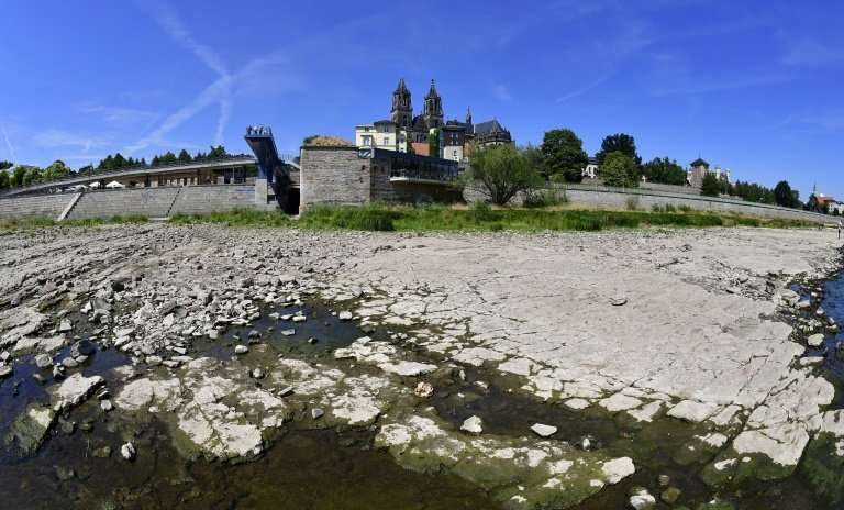 The dried out riverbank of Elbe in Magdeburg, eastern Germany