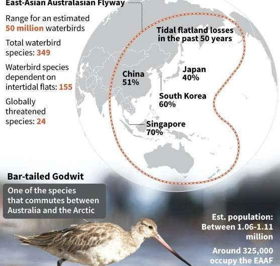 The East Asian-Australasian Flyway