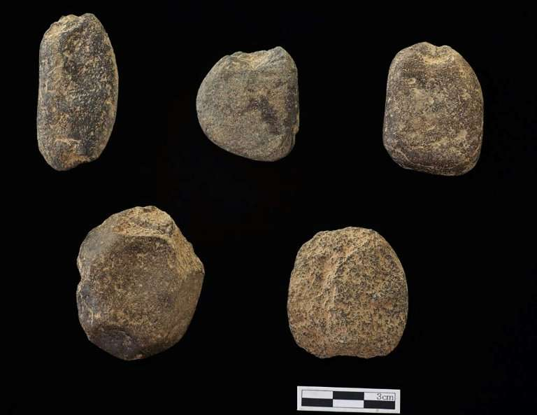 The limestone sinkers, each weighing between 14 to 52 grammes, would have been tied to the bottom of nets and used to catch smal