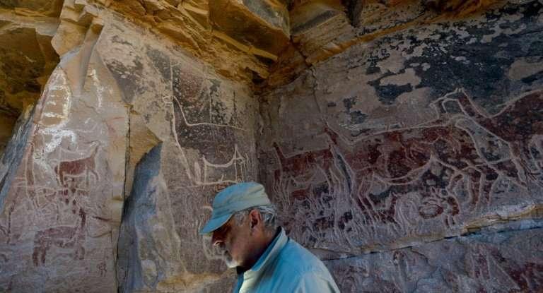 The many drawings of llamas indicates their importance to the Atacama Desert shepherds