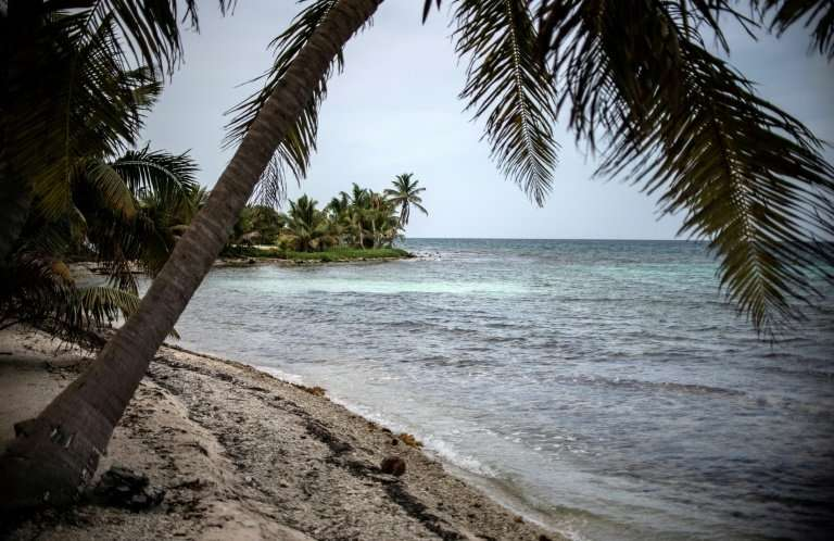 The Mesoamerican Reef is expected to be removed from UNESCO's list of threatened World Heritage sites thanks to conservation eff