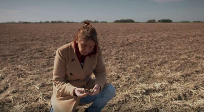 The persistence of pesticides threatens European soils