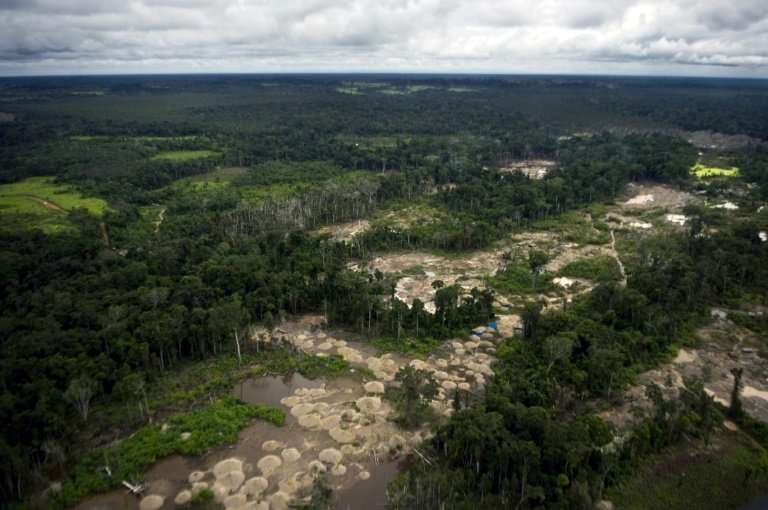 The Peruvian Amazon, pictured here in 2011, is undergoing deforestation at an accelerating pace, environmental officials say