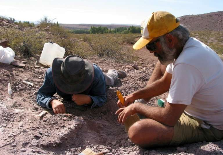 The region where the new species of sauropod was found is unusual as it would have been a desert during that era, 110 million ye