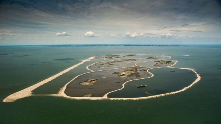 The vast expanse of Markermeer lake was until recently nothing more than a cloudy mass devoid of aquatic life