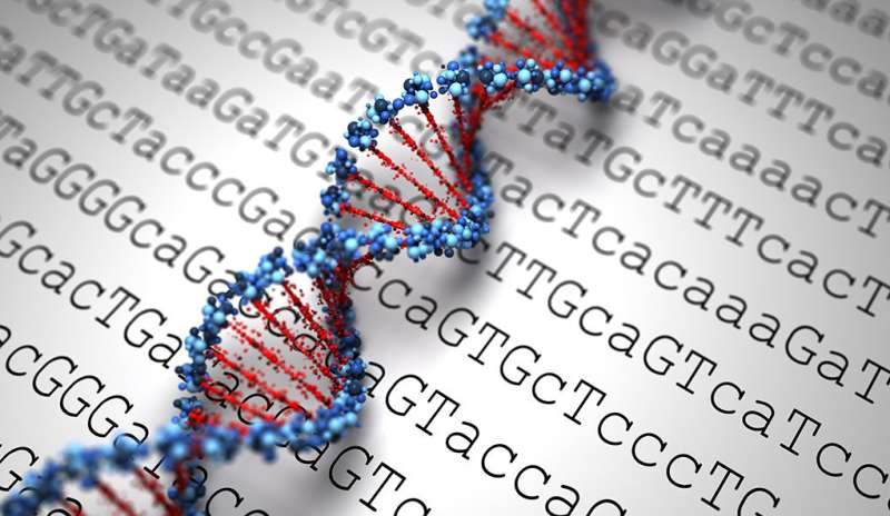 Tiny DNA modification has big impact on deadly tumors