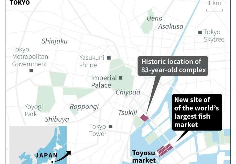 Toyosu fish market: the new Tsukiji
