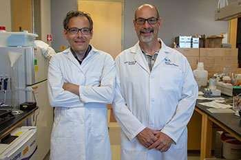 UA clinical trial to repurpose ketamine for Parkinson's patients