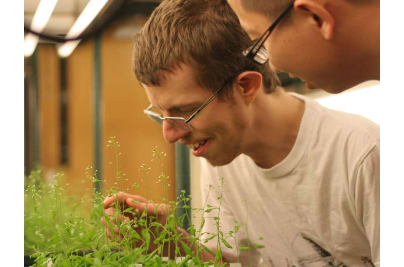UGA researchers develop new method to improve crops