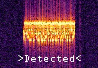 Ultrasound-firewall for mobile phones