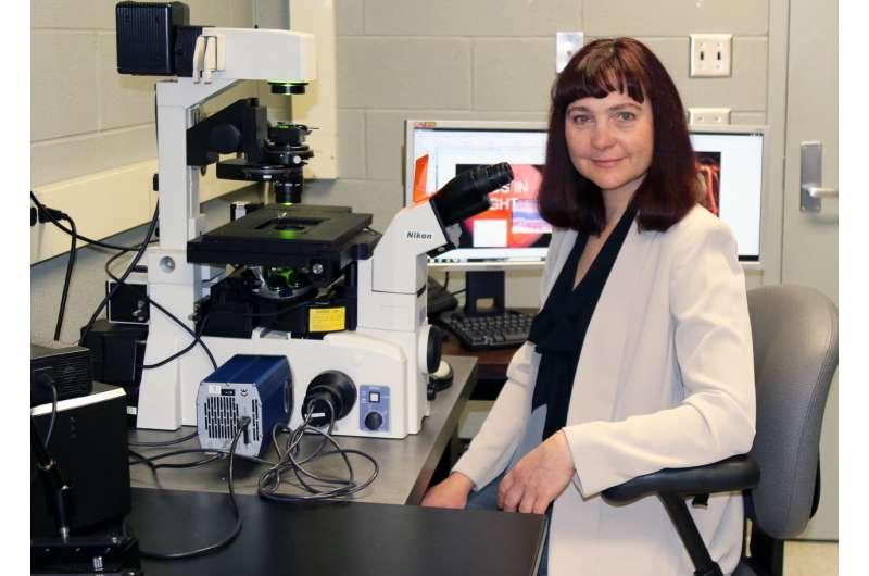 Unexpected finding may deter disabling diabetic eye disease