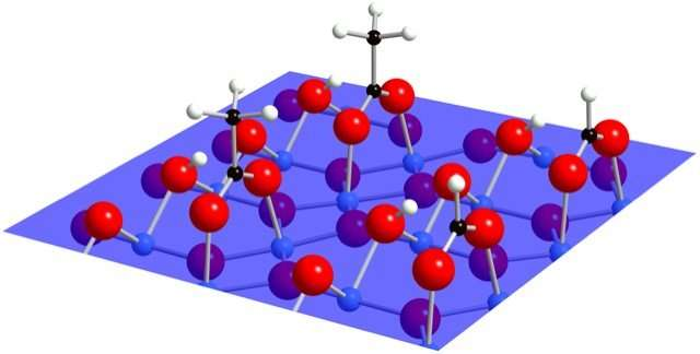 Unraveling titanium dioxide's self-cleaning ability