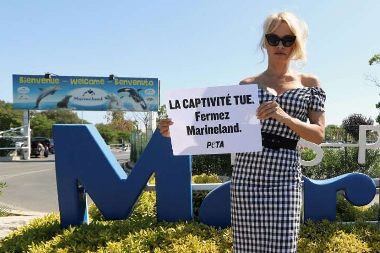 US actress Pamela Anderson chose the Marineland complex in southern France for a protest last August against keeping dolphins an