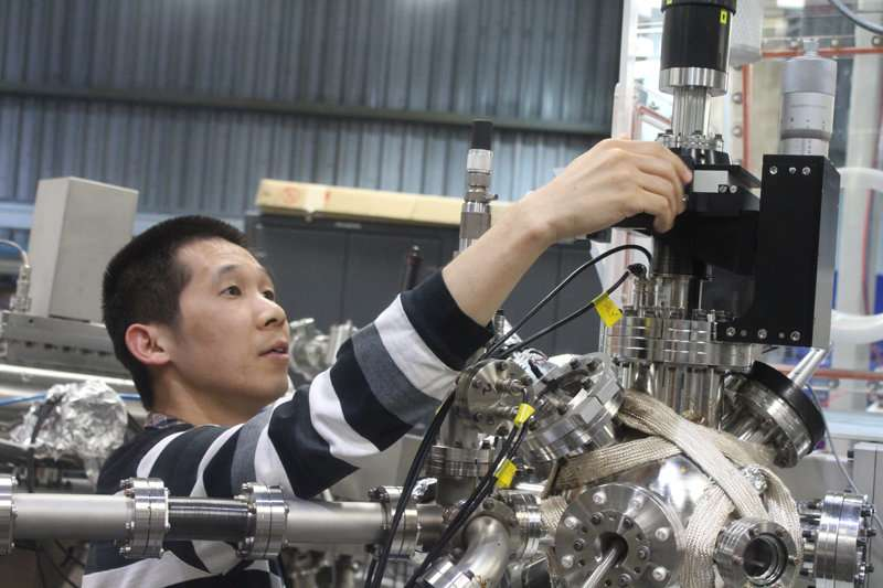 Using elements in plants to increase fuel cell efficiency while reducing costs
