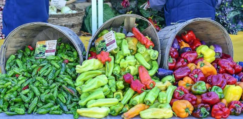 Want to eat healthy? Try an eco-friendly diet