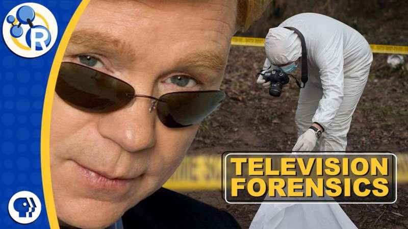 What do crime scene investigators actually do? (video)
