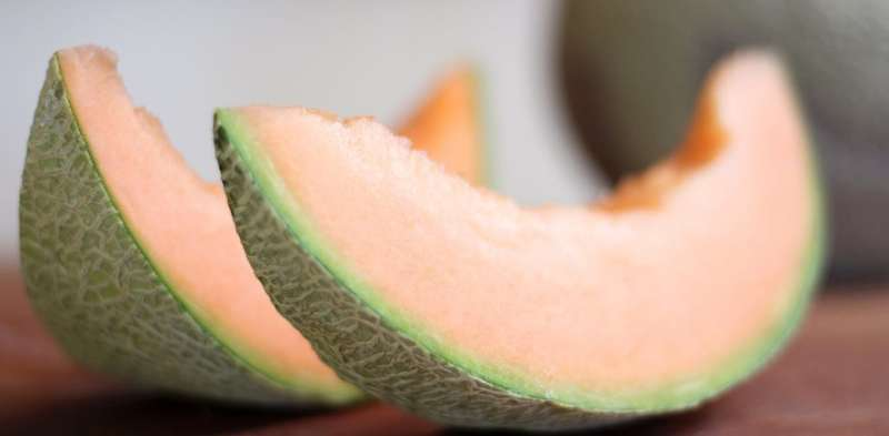 What is listeria and how does it spread in rockmelons?