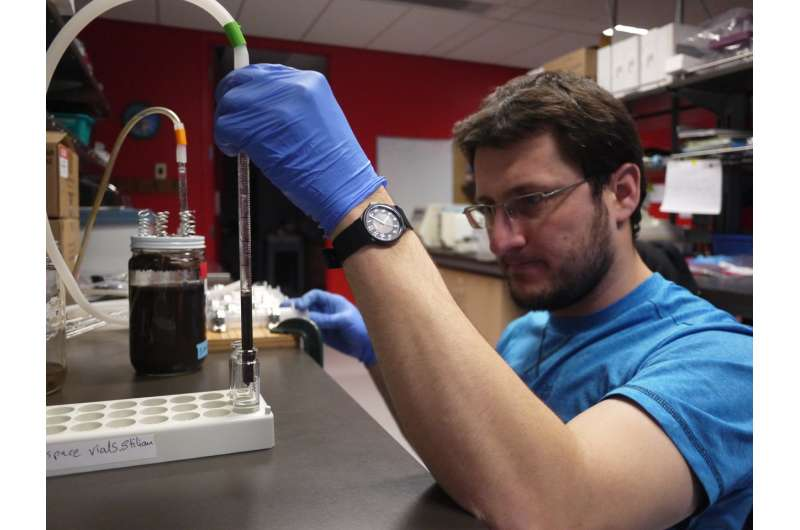 What's in a niche? Time to rethink microbial ecology, say researchers