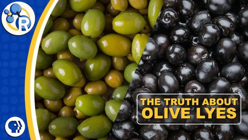 Why you can't buy fresh olives (video)