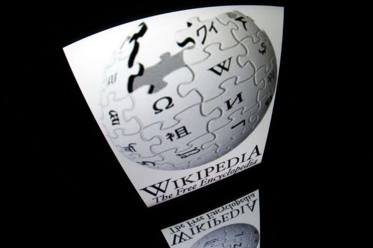 Wikipedia chief Jimmy Wales and Greens MEP Julia Reda, a leading campaigner on the issue, insist that the website would fall wit