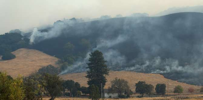 Wildfire smoke could send more seniors to the ER for heart, stroke issues