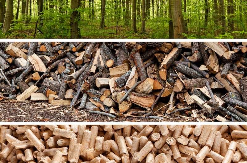 Wood pellets: Renewable, but not carbon neutral