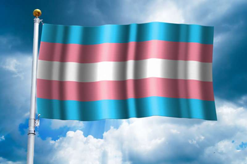 Would a new definition of gender erase trans people?