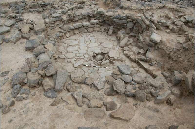 11,500-year-old animal bones in Jordan suggest early dogs helped humans hunt