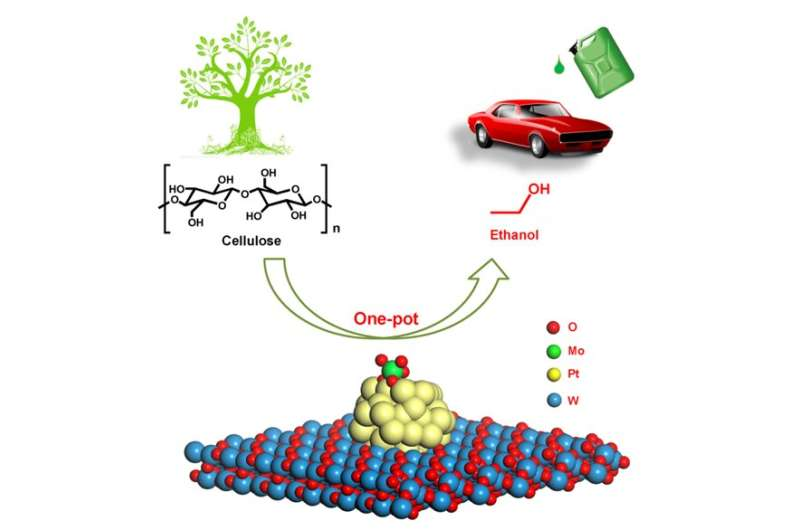 Scientists develop a chemocatalytic approach for one-pot reaction of cellulosic ethanol
