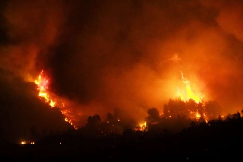 A fire fanned by a strong wind raged early Thursday in the Aude department of southern France but firefighters said they had the
