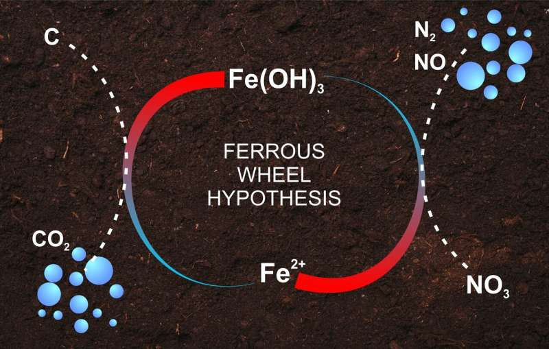 A RUDN Agrochemist Found Proof of the Ferrous Wheel Hypothesis