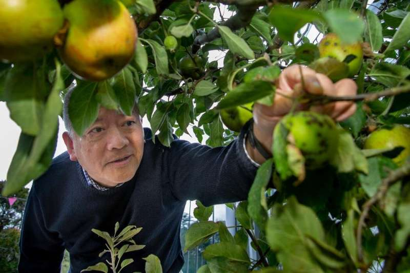 Biodegradable coating to help achieve food security