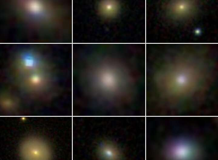 Black holes stunt growth of dwarf galaxies