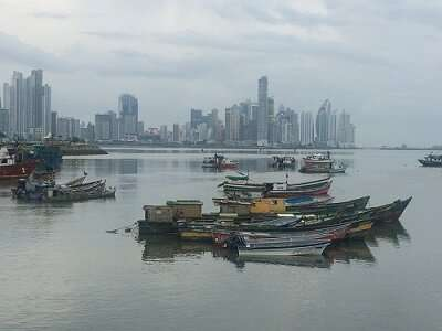 Carbon dioxide emissions from global fisheries larger than previously thought